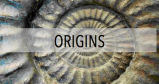 Button Origins